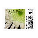 RSVP Chrysanthemum Stamp