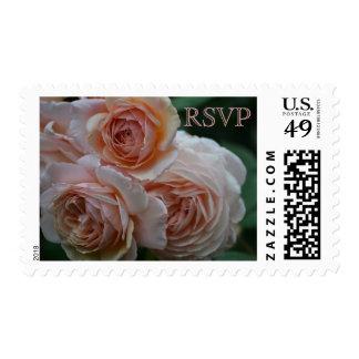 RSVP color de rosa inglés Franqueo