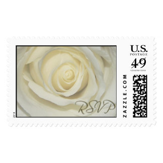 RSVP Cream Wedding Day Rose Postage