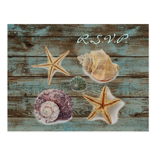 rsvp elegante del boda de playa de los seashells d postal