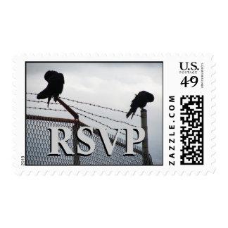RSVP en blanco y negro Envio