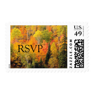 RSVP Fall Wedding Autumn Weddings Invitation Stamp
