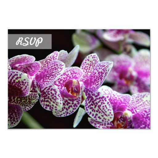 RSVP Orchid Flower 3.5x5 Paper Invitation Card