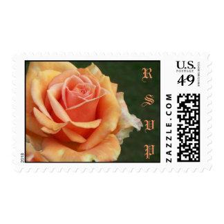 RSVP Peach Rose Postage Stamp