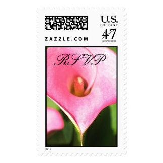 RSVP-Pink Cala Lily Stamp