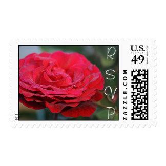 RSVP, solo rosa rojo Sellos