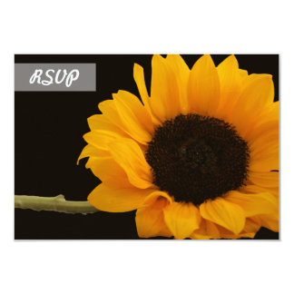 RSVP Sunflower Photo on Black Cards