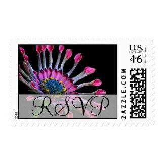 RSVP Wedding  Exotic Purple Flower Postage
