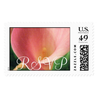 RSVP Wedding Pink Cala Lily Postage Stamp