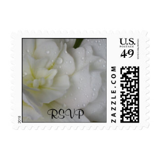 RSVP White Begonia Stamp