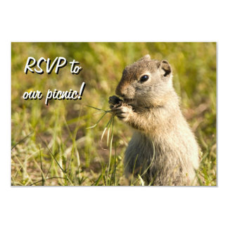 RSVP with cute ground squirrel eating, custom text Card