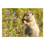 RSVP with cute ground squirrel eating, custom text Invitation