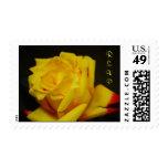 RSVP - Yellow Rose Postage