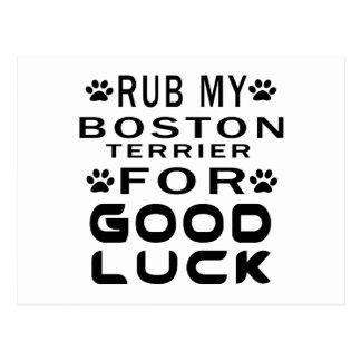 Rub My Boston Terrier For Good Luck Postcard