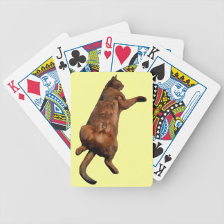 Rub My Tummy Bicycle Playing Cards