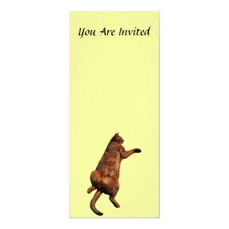 Rub My Tummy Card
