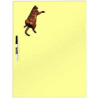 Rub My Tummy Dry-Erase Board