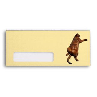 Rub My Tummy Envelope