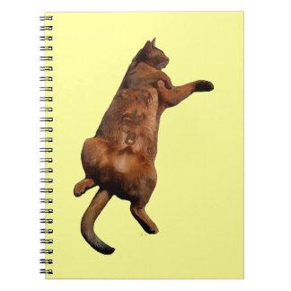 Rub My Tummy Note Books