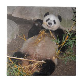 Rub my Tummy Panda Bear Tile