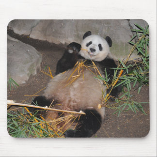 """""""Rub My Tummy!"""" Panda Mousepad"""