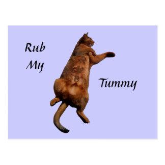 Rub My Tummy Postcard