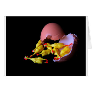 Rubber Chicken Hatchling Card