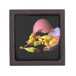 Rubber Chicken Hatchling Jewelry Box