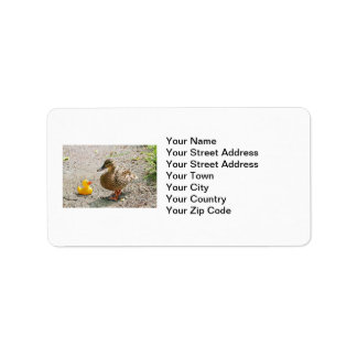 Rubber Duck and Mother Duck Label
