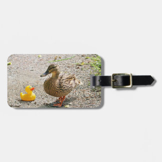 Rubber Duck and Mother Duck Luggage Tags