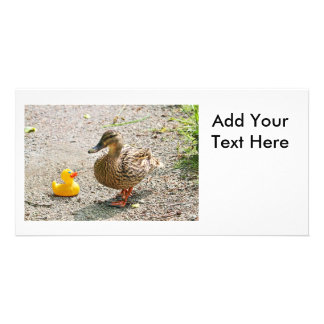 Rubber Duck and Mother Duck Photo Cards