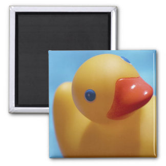 Rubber Duck Close-Up 2 Inch Square Magnet