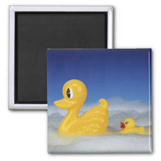 Rubber Duck Family 2 Inch Square Magnet