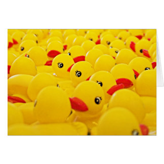 Rubber Duck Photo Blank Card