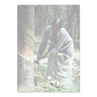 Rubber tapper at work near Ipoh, Malaysia Custom Announcement