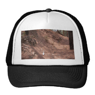 Rubbish in the form of a bottle in a forest trucker hat