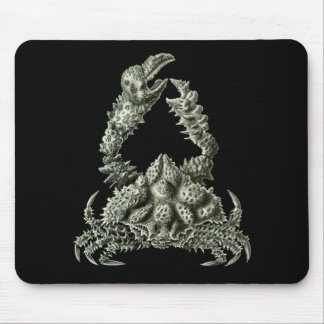 Rubble Crab Mouse Pad