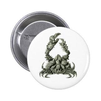 Rubble Crab Pinback Button