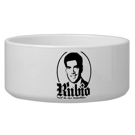 RUBIO IS MY HOMEBOY.png Dog Water Bowl