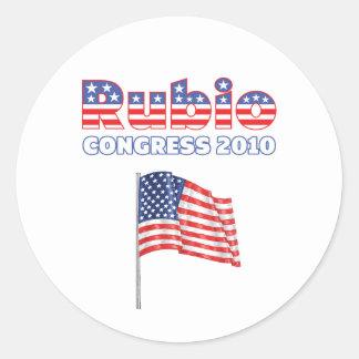 Rubio Patriotic American Flag 2010 Elections Stickers