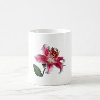 Rubrum Lily Mugs
