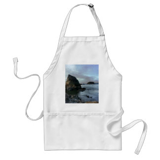 Ruby Beach in Olympic National Park Adult Apron