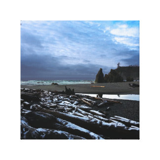 Ruby Beach in Olympic National Park Canvas Print