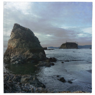 Ruby Beach in Olympic National Park Napkin