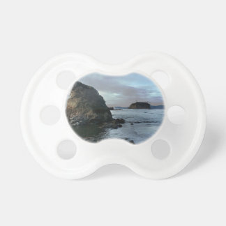 Ruby Beach in Olympic National Park Pacifier
