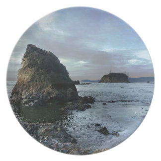 Ruby Beach in Olympic National Park Plate