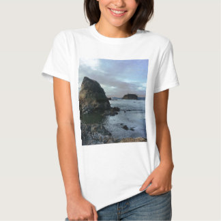 Ruby Beach in Olympic National Park T Shirt