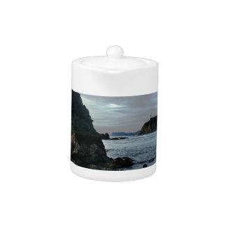 Ruby Beach in Olympic National Park Teapot