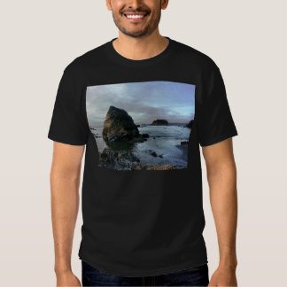 Ruby Beach in Olympic National Park Tee Shirt
