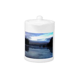 Ruby Beach Olympic National Park Teapot